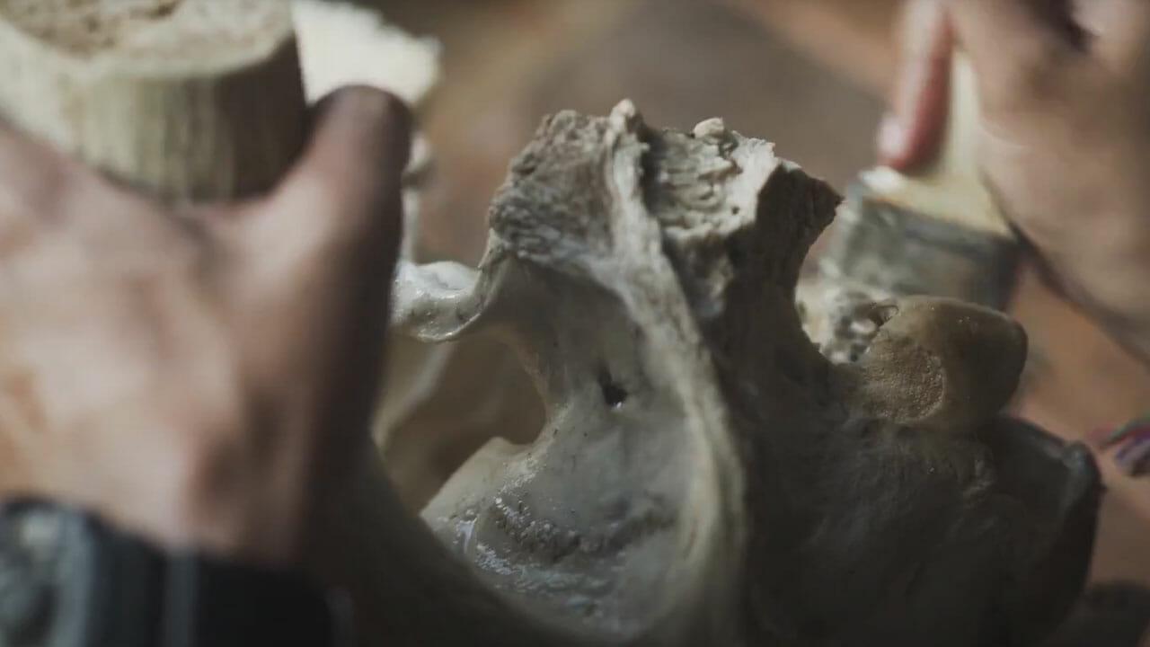 Skull-Bliss-2